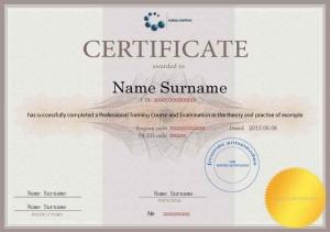 Išduodamas tarptautinis sertifikatas